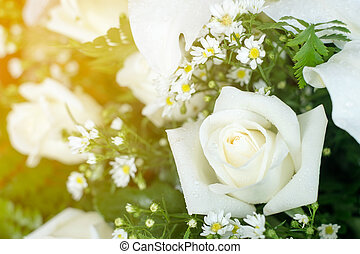 buquet, margaridas, rosas, casório, nupcial, branca