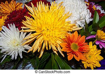 buquet, Outono, flores