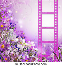 buquet, primavera, flores brancas, roxo