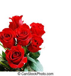 buquet, rosa, vermelho