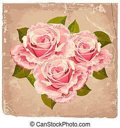buquet, rosas, desenho, retro
