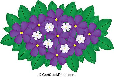 buquet, violeta