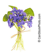buquet, violetas