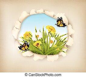 buraco, em, papel, revelar, um, primavera, experiência.