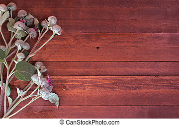burdock flowers on a wooden with copy space