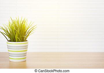 plante jalousie fen tre arri re plan vert jalousie lierre. Black Bedroom Furniture Sets. Home Design Ideas