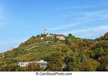 Burg Hornberg on Neckar river, Germany