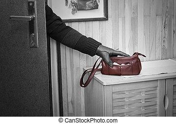 Burglary - Thief breaking in doors and stealing a handbag.