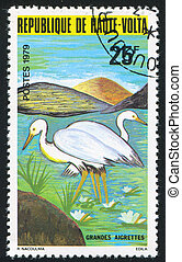 Egrets - BURKINA FASO - CIRCA 1979: stamp printed by Burkina...