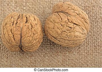 burlap walnut on white background