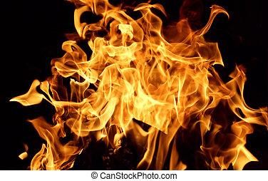 Burn - Dancing flames against a black background.
