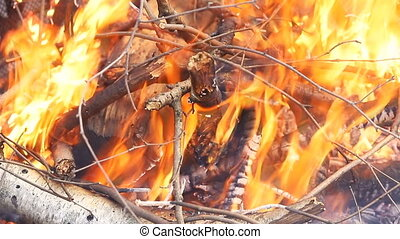 Burn fire with wood and legs - Burn fire Hot coals and...