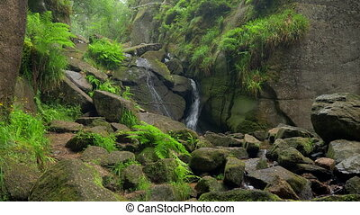 Burn O Vat Waterfall, Aberdeenshire, Scotland - Native...