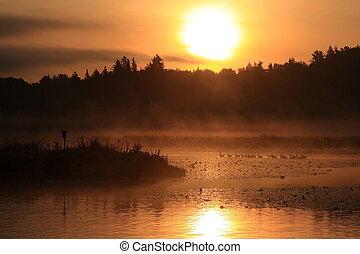 burnaby, lago, amanhecer
