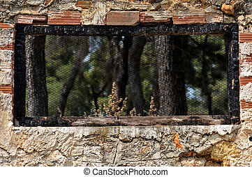 burned window frame forest view