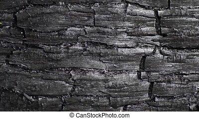 burned wood macro - burned wood structure, sliding camera...