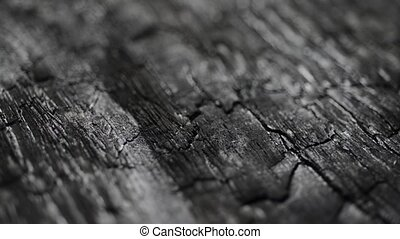 burned wood macro structure, dolly camera movement