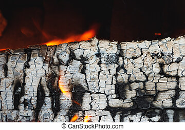 burned wooden log with ashes texture