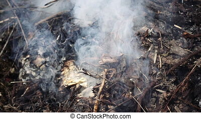 Burning and smoking heap of branches and leaves