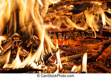 Burning billets in hot stove - Burning firewood in the...