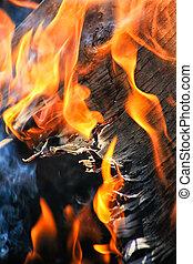 burning birch firewood