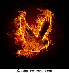 Burning Bird - Burning bird silhouette on black background
