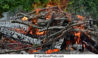 burning branch