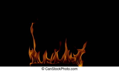 Burning bright orange flames on a black background 4k