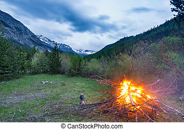 Burning camp fire into remote larch and pine tree woodland with high altitude landscape and dramatic sky at dusk. Summer adventures in the Italian French Alps.