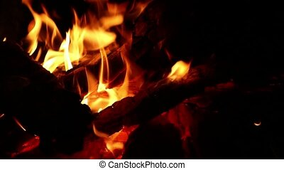 burning firewood closeup, black burnt wood and dancing orange flame, camping evening