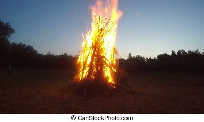 Burning campfire in a open place