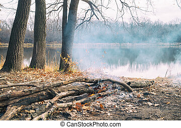 Burning campfire on shore of an autumn forest lake