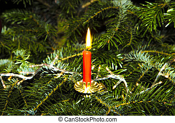 burning candle at the  green christmas tree