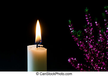 Burning candle in front of heather flower - One white...