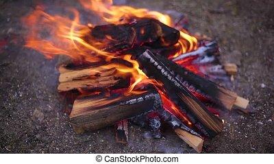 burning charred firewood, burning campfire outdoors.