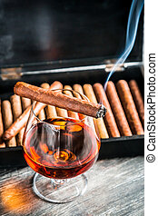 Burning cigar on glass with cognac