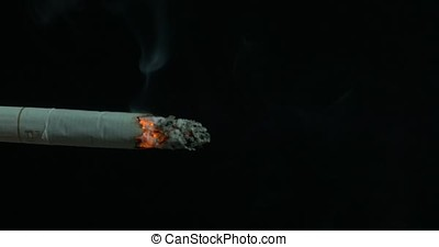 Burning cigarette with smoke on black background. Cigarette...