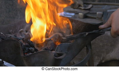 Burning coal in the hearth of a blacksmith. The worker...