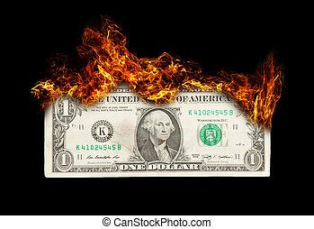 burning, dollarbiljet, symbolizing, slordig, geld bestuur