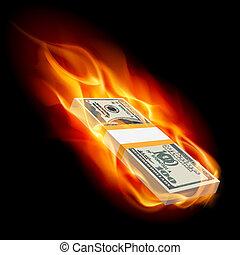 Burning dollars - Pile of Dollars on Fire. Illustration on...