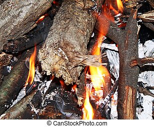 Burning embers of a campfire - the remaining embers of a...