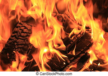 Burning fire close-up