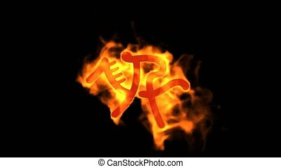 burning fire riding sport sign