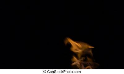 Burning fire, video on black background