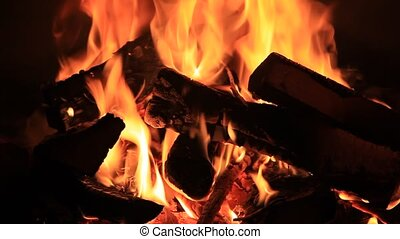 Burning fire wood in the in a fireplace