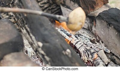 Burning firewood in flame bonfire close up. Tourist roasting...