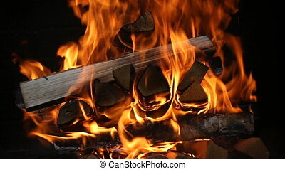 Burning firewood in the fireplace close up.