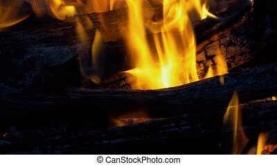 Burning flames and coals in the fire