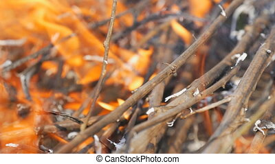 Burning grass and branches close up view. Dangerous wild...