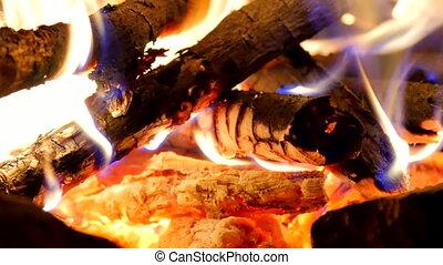 Burning hardwood in detail. Burning woods shiver in hot air...